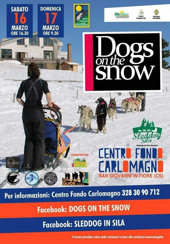 Dogs on the Snow 2019 - Lorica